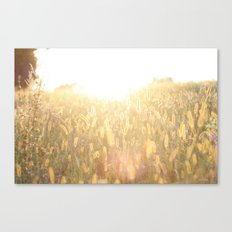 blessed sunset Canvas Print