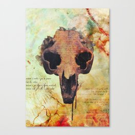 Crânio Dissonia Canvas Print