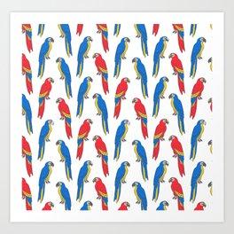Parrots tropical birds jungle bird parrot art pattern gifts Art Print