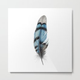 Blue Jay Feather | Watercolour Painting Metal Print