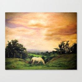 Farmland in Cumbria Canvas Print