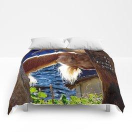 Is it Friday yet??? Comforters