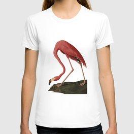 Flamingo Large Print T-shirt