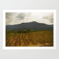 Rioja vineyards, spain, late spring Art Print