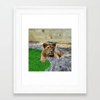 lion king Framed Art Prints featuring King Lion by helsch photography