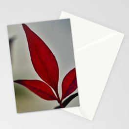 Red Lead Stationery Cards