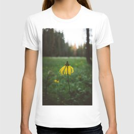 Yosemite National Park XIV T-shirt