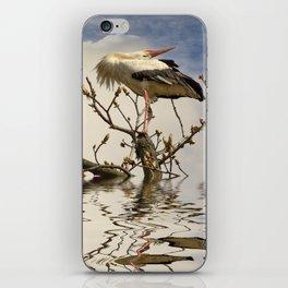 Weißstorch (Ciconia ciconia)  iPhone Skin