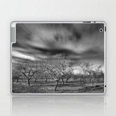 Rural Beauty. Almond fields Laptop & iPad Skin