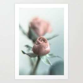 A Pink Rose for your Sweetheart... Art Print