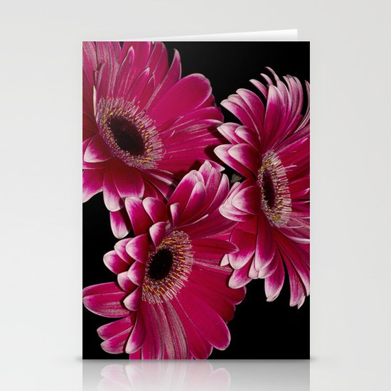 Triple Crown of Red Gerbera Daisys Stationery Cards