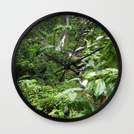 SEE THAT WATERFALL!  LOOKIE THERE! Wall Clock