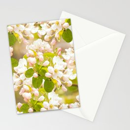 Apple tree branches with lovely flowers and buds on a pastel green background Stationery Cards