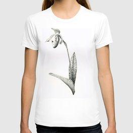 Venus-slipper orchid Paphiopedilum Supersuk x Raisin Pie T-shirt
