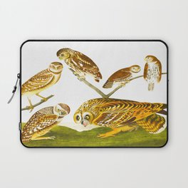 Burrowing Owl Illustration Laptop Sleeve