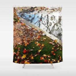 California Winter Shower Curtain