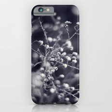 Winter Aster in Black and White iPhone 6s Slim Case