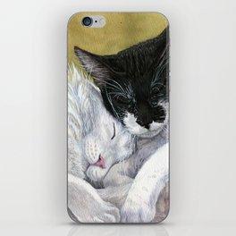 Snuggling cats iPhone Skin