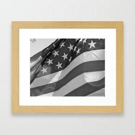 America Framed Art Print