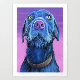 Logan the pudelpointer Art Print
