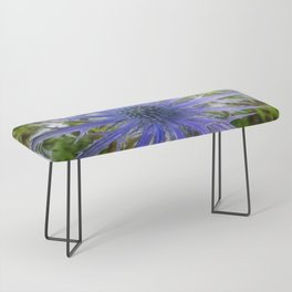 A thistle with style Bench
