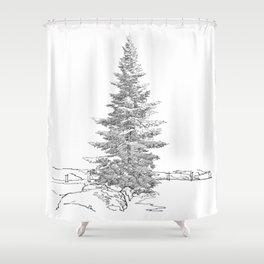 North American fir tree  Shower Curtain
