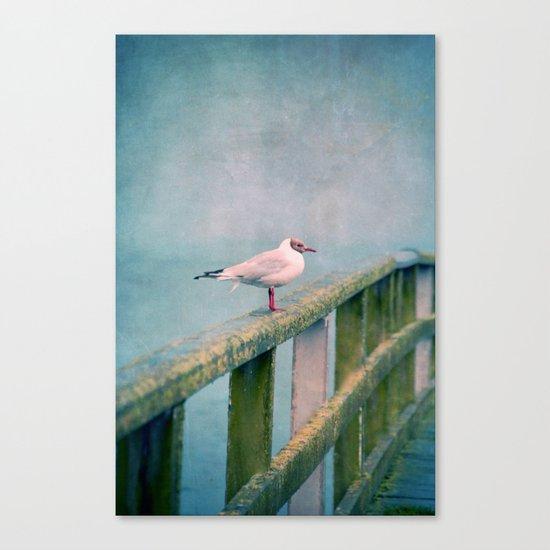 Hy :-) Canvas Print