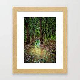 Cork Oak Grove Framed Art Print
