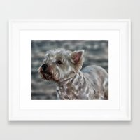 westie Framed Art Prints featuring Westie Love by Clare Bevan Photography