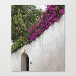 Wall with Flowers, Positano Canvas Print