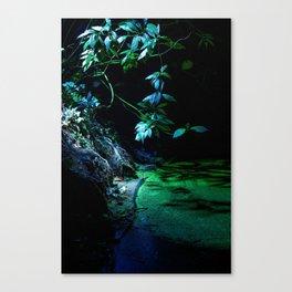 Leaf lighting Canvas Print