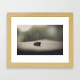 Little Secret Box (2) Framed Art Print