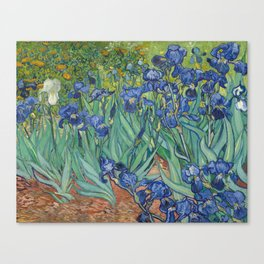 Irises by Vincent van Gogh Canvas Print