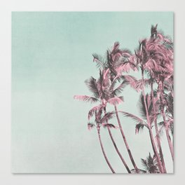 Tropical Palm Trees In Surreal Pink Canvas Print