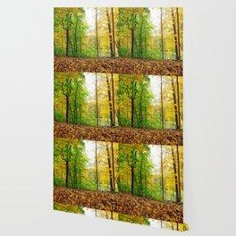 Mid Autumn Wallpaper