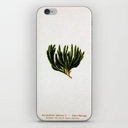 Botanical Moss iPhone Skin