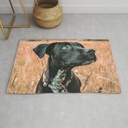 Wheatfield Dog //  Portrait If These Eyes Could Talk .. Stunning Rusty Blues Rug