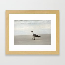 Seagull Stroll Framed Art Print