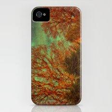 Trees, Trees, Trees Slim Case iPhone (4, 4s)