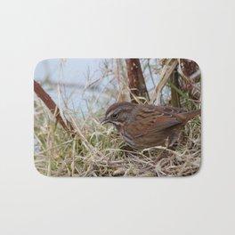 Small Bird Bath Mat
