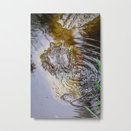 Gator Blowing Bubbles Metal Print