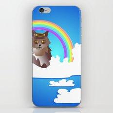 Momma Kitty & Rainbow Bridge iPhone & iPod Skin