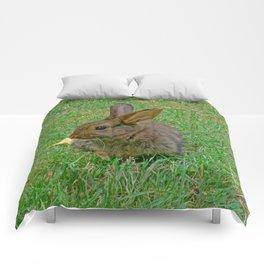 Little Bunny Comforters
