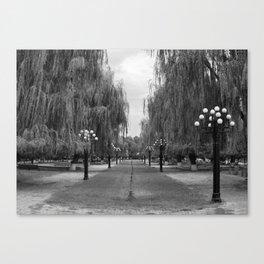 Quasi-Symmetry Canvas Print