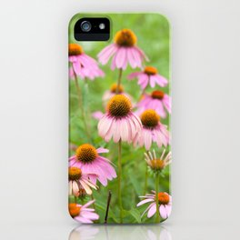 Pink Echinacea Wildflower iPhone Case