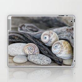 Shark's eye shells and driftwood Laptop & iPad Skin