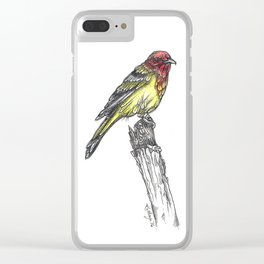 Sir Tanager Clear iPhone Case