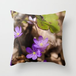 Anemone hepatica Throw Pillow