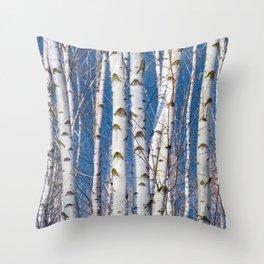 Birches 26 Throw Pillow