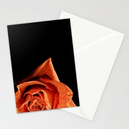 Dried Stationery Cards